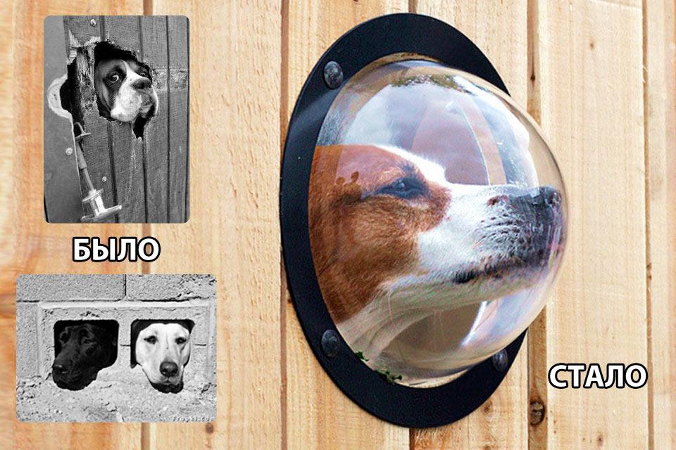 Окно для собаки Pet Peek Dog Window