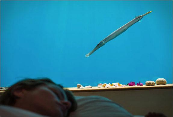 06-Manta-Underwater-Room