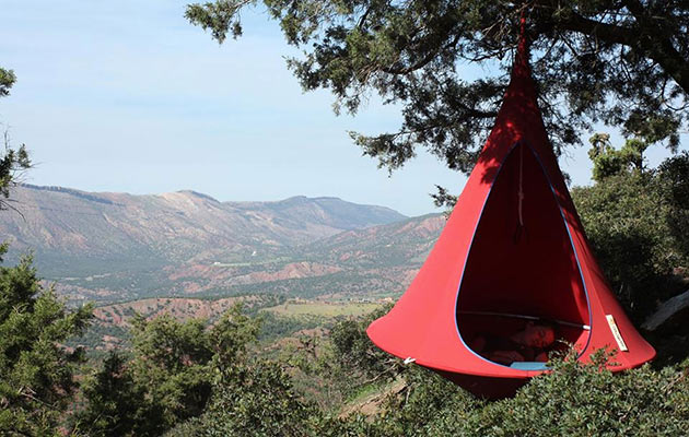 03-Cacoon-Hanging-Nest