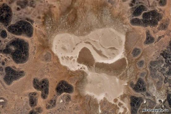 Нигерский череп в пустыне